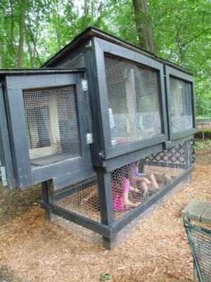 Our Large Rabbit Hutch
