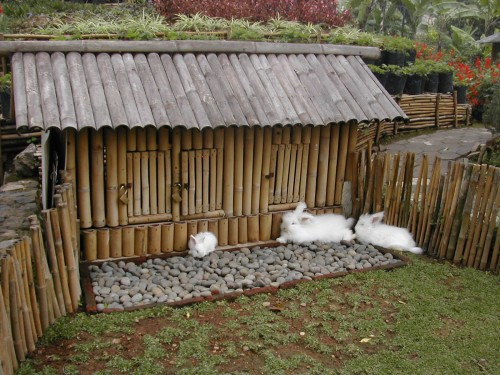 Outdoor-rabbit-hutch