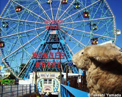 Seara (sea rabbit) at Deno's Wonder Wheel Amusement Park in Coney Island, Brooklyn, New York (August 29, 2010)